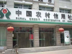 小额贷款可以去农村信用社吗?农村信用社小额贷款怎么样?