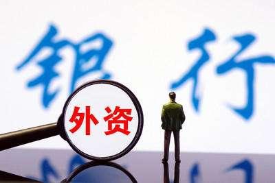 个人贷款能不能向外资银行办理贷款业务?